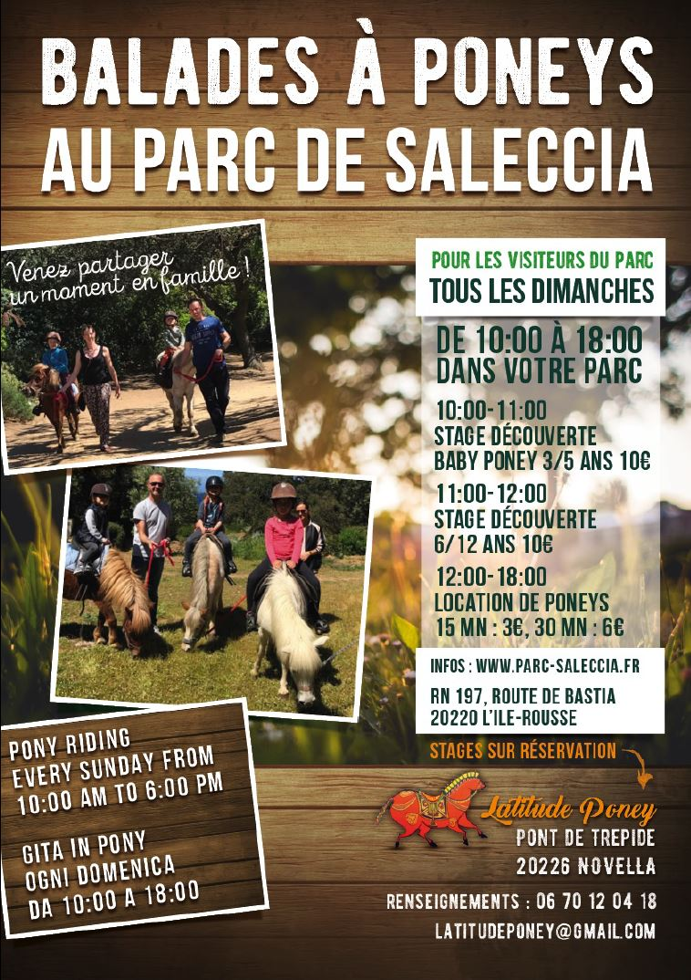 2019-saleccia-poney